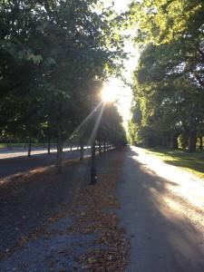 Drottningholm hösten 2015